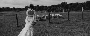 panna młoda w przeźroczystej sukni ślubnej na łące z owcami
