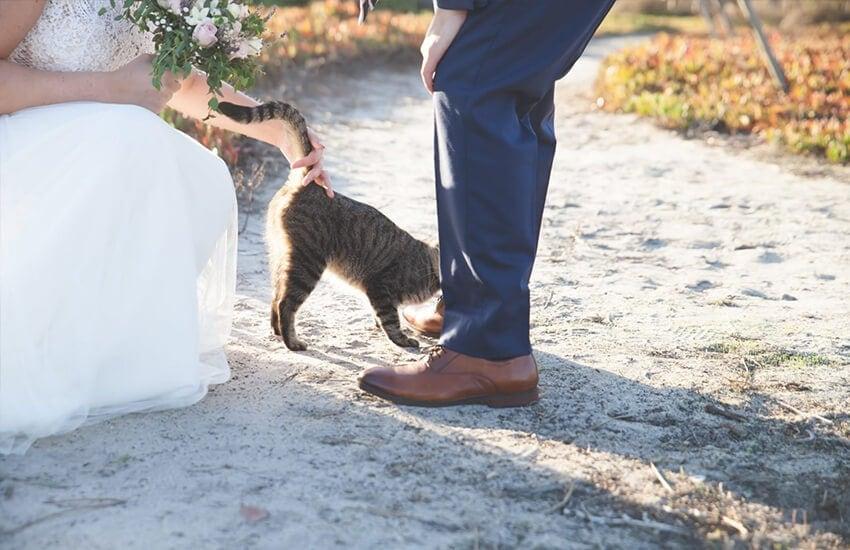 para młoda z kotem
